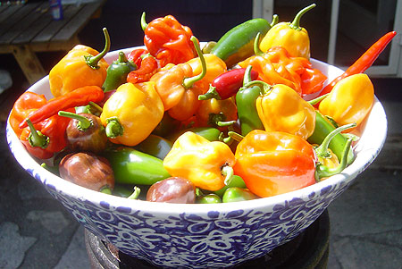 Bowl of peppers