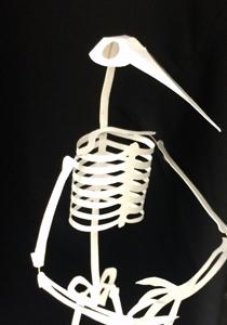 Paper Bird Skeleton