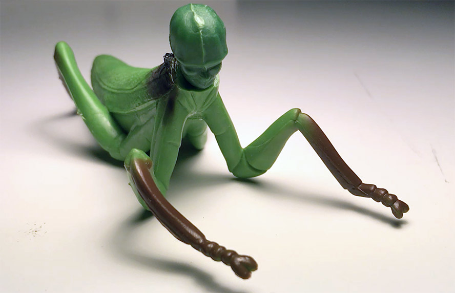 Mantis Soldier looking mournful