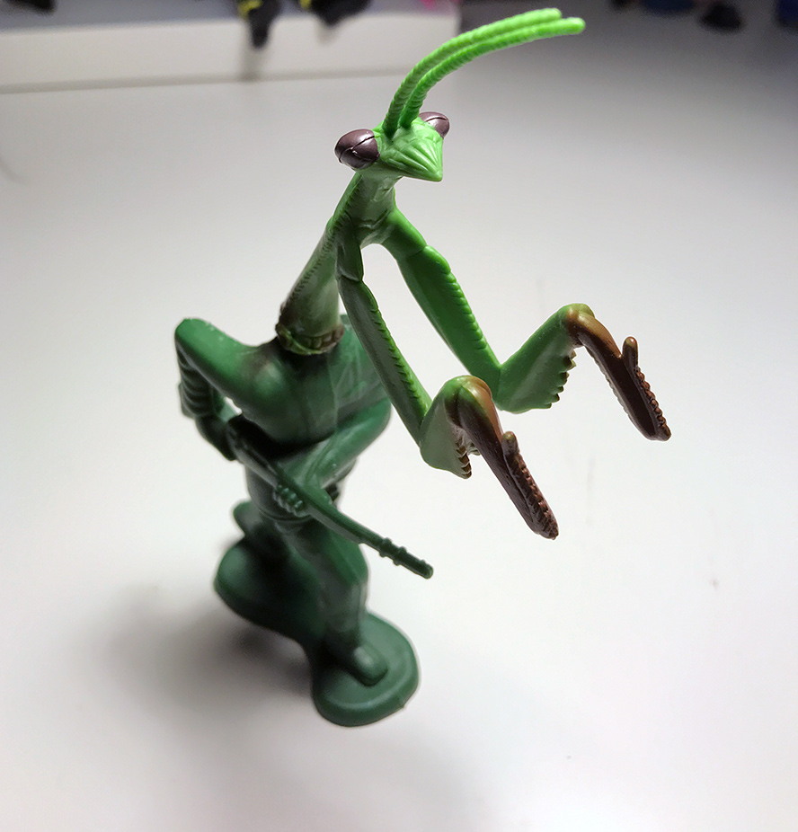 Soldier Mantis