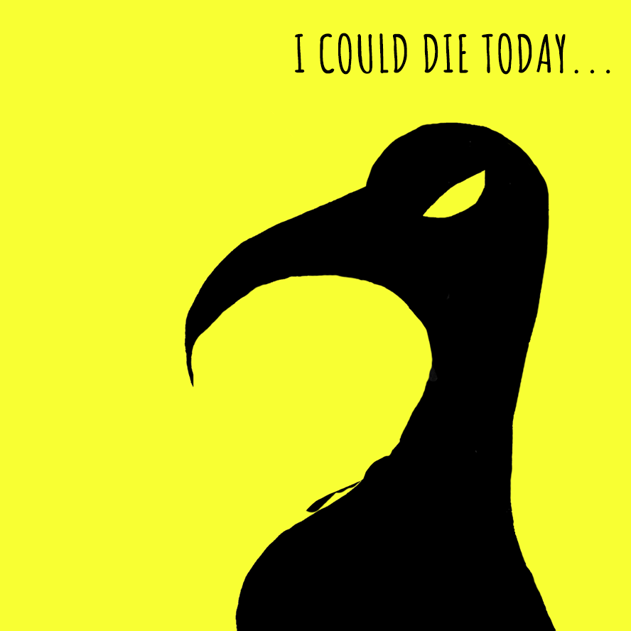 The Vulture says 'I could die today'