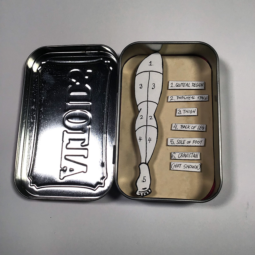 Anatomic drawing of a leg in an altoids tin